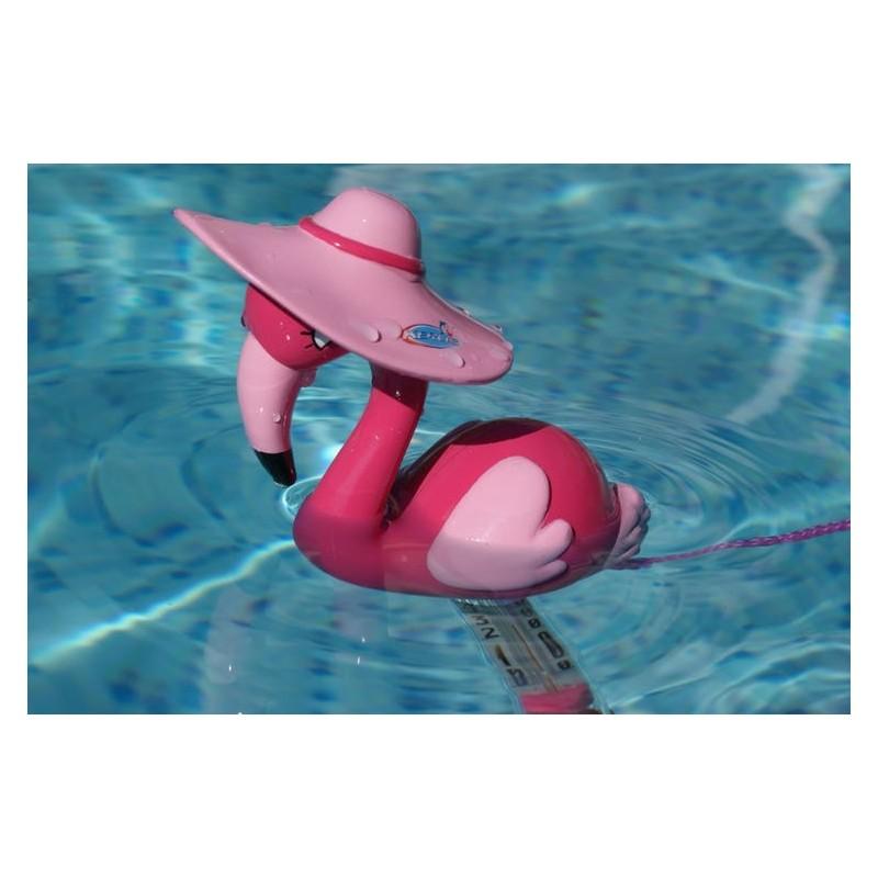 Thermomètre fun piscine
